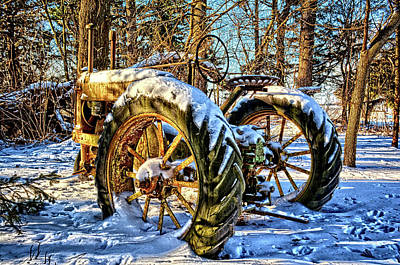 Photograph - Deere In The Woods 2 by Bonfire Photography
