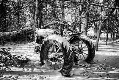 Photograph - Deere In The Woods Bnw by Bonfire Photography