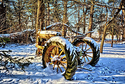 Photograph - Deere In The Woods by Bonfire Photography