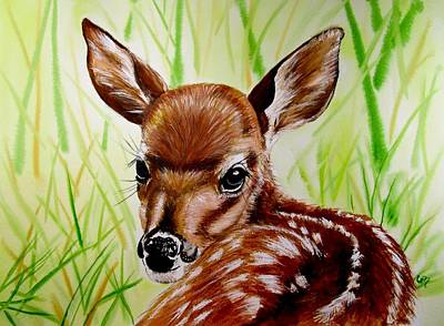 Whitetail Fawn Painting - Deerly Beloved by Carol Blackhurst