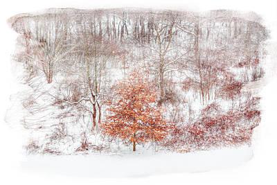 Snowscape Digital Art - Defiance Winter Tree by Randy Steele