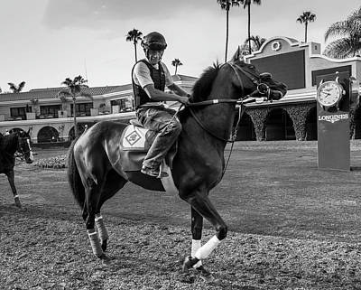 Photograph - Del Mar Show Off by Dusty Wynne