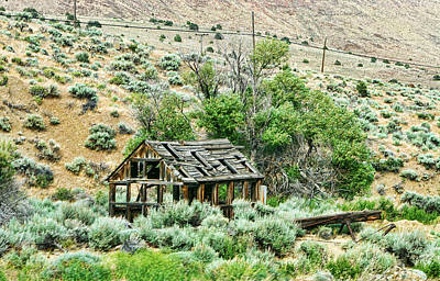 Delapidated Old Western Shack Art Print by Linda Phelps