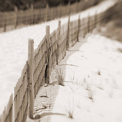 Photograph - Delaware Dunes Number Eight  by Bob Coates