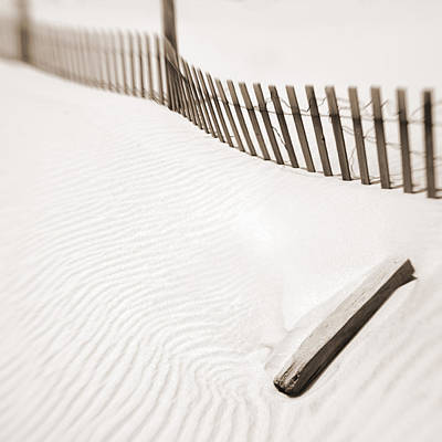 Photograph - Delaware Dunes Number Five by Bob Coates