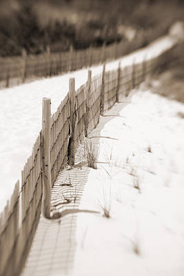 Photograph - Delaware Dunes Number Fourteen by Bob Coates