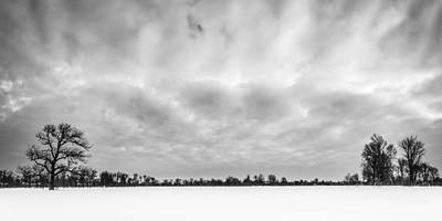 Photograph - Delaware Park Winter  Meadow by Chris Bordeleau