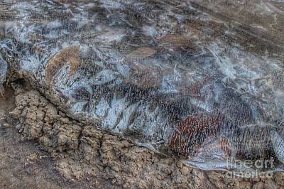 Photograph - Delaware River Ice With Leaves by Christopher Lotito