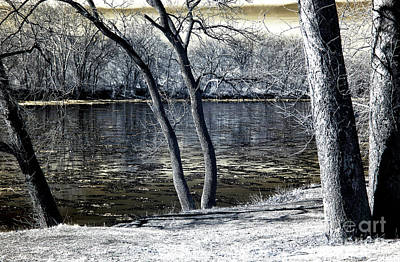 Photograph - Delaware River Infrared by John Rizzuto