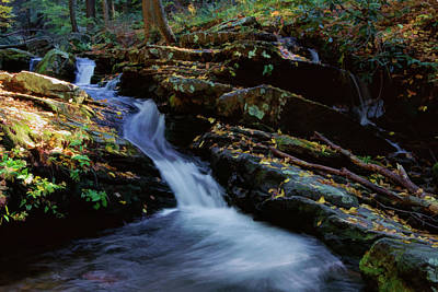 Photograph - Delaware Water Gap 020 by Scott McAllister