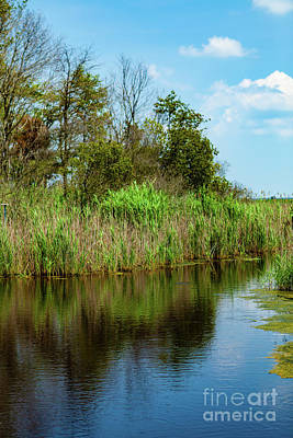 Photograph - Delaware Waterway by George Sheldon