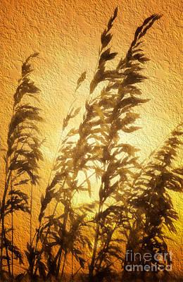 Painting - Delicate Dawn II by Dan Carmichael