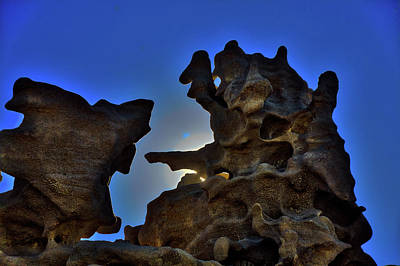 Photograph - Delicate Geology by Mike Flynn