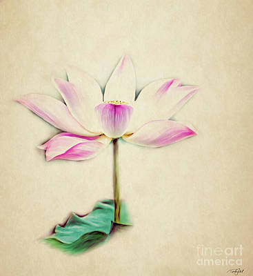 Large Buddha Painting - Delicate Lotus by Ted Guhl