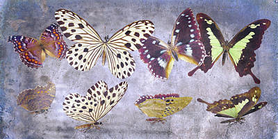 Good Luck Digital Art - Delicate Peaceland by Betsy Knapp