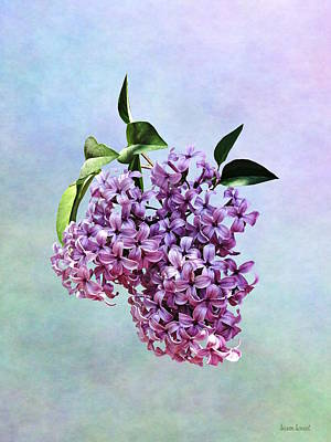Photograph - Delicate Pink Lilacs by Susan Savad