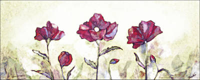 Red Bud Painting - Delicate Poppy I by Shadia Derbyshire