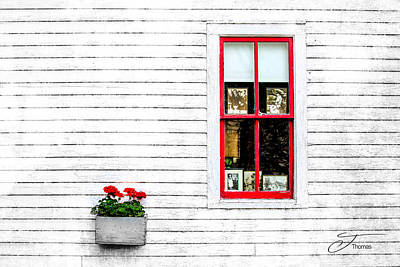 Wall Art - Photograph - Delicate Simplicities by J Thomas