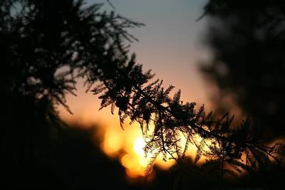 Thomas Kinkade - Delicate Sunset by Laurel Gillespie