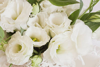 Photograph - Delicate White Lisianthus Flowers by Sandra Foster