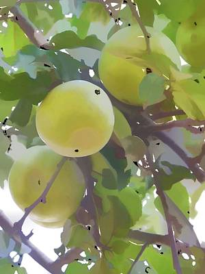 Yield Painting - Delicious Yellow Apple In Summer by Lanjee Chee