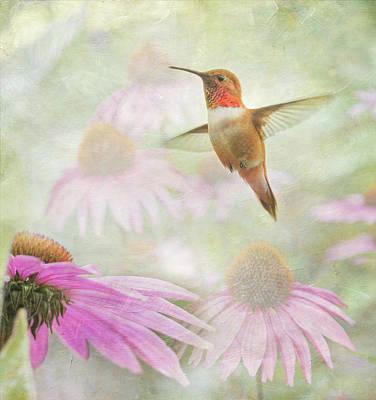 Delight In A Flower Garden Art Print