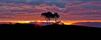 Country Scenes Photograph - Delightful Awakenings by Az Jackson