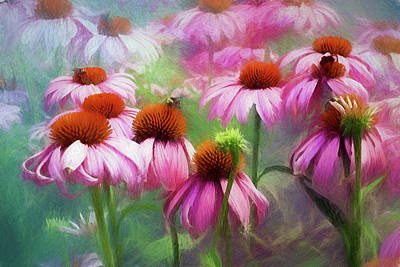 Digital Art - Delightful Coneflowers by Diane Schuster