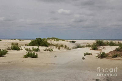 Photograph - Delightful Dunes by Roberta Byram