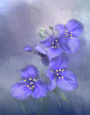 Photograph - Delphinium Portrait by David and Carol Kelly