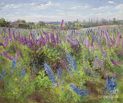 Blue Poppies Painting - Delphiniums And Poppies by Timothy Easton
