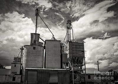 Delta Colorado Grain Elevator Art Print by Janice Rae Pariza
