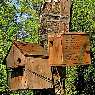 Deluxe Apartments For Birds And Animals Original