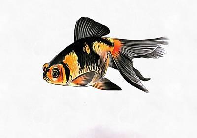 Painting - Demekin Goldfish Isolated On White by Tracey Harrington-Simpson