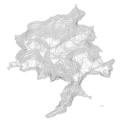 Denali Art Print Contour Map Of Denali In Alaska Art Print