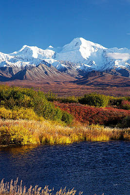 Denali Autumn Art Print by Ed Boudreau