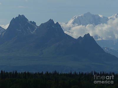Photograph - Denali by Brian Boyle