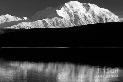 Photograph - Denali by Chris Scroggins