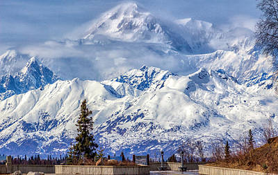 Photograph - Denali by Michael Rogers