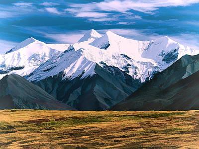 Denali Painting - Denali National Park Alaska by Elaine Plesser
