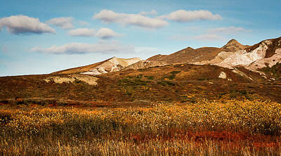 Photograph - Denali National Park by Benjamin Dahl