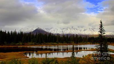Photograph - Denali National Park by Lennie Malvone