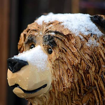 Photograph - Denali Snow Bear by Connie Fox