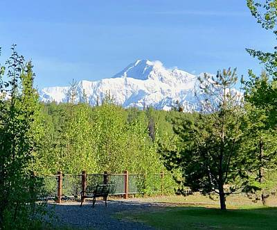 Photograph - Denali by Tony Mathews