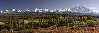 Alaska Mountains Photograph - Denali Tundra by Ed Boudreau