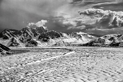 Photograph - Denali Wilderness by Alan Toepfer