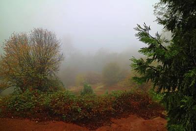 Photograph - Dense Fog In Oak Run by Joyce Dickens