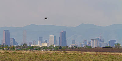 Photograph - Denver Colorado Pretty Bird Fly By by James BO Insogna