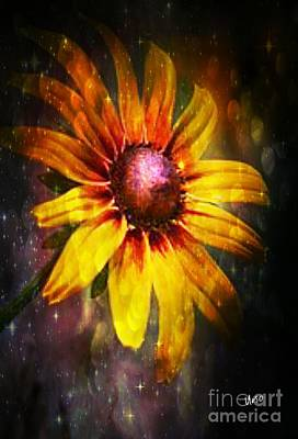 Photograph - Denver Daisy 2017 by Maria Urso