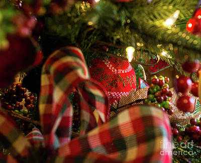 Photograph - Depth Of A Christmas Tree by Jennifer White